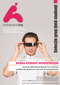 Burse proiect AntreprenorIng